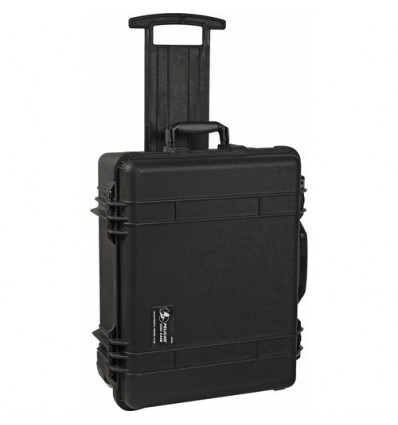 Pelican 1560 Case (Black with Foam)